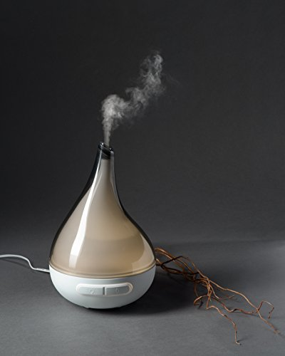Quooz Best Oil Diffuser